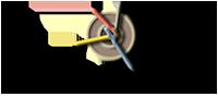 Website Design Services - Net Karigar